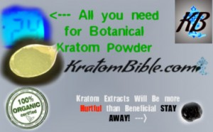 kratom powder vs kratom extracts, kratom enhanced blends, extracted kratom, kratom powder dosage